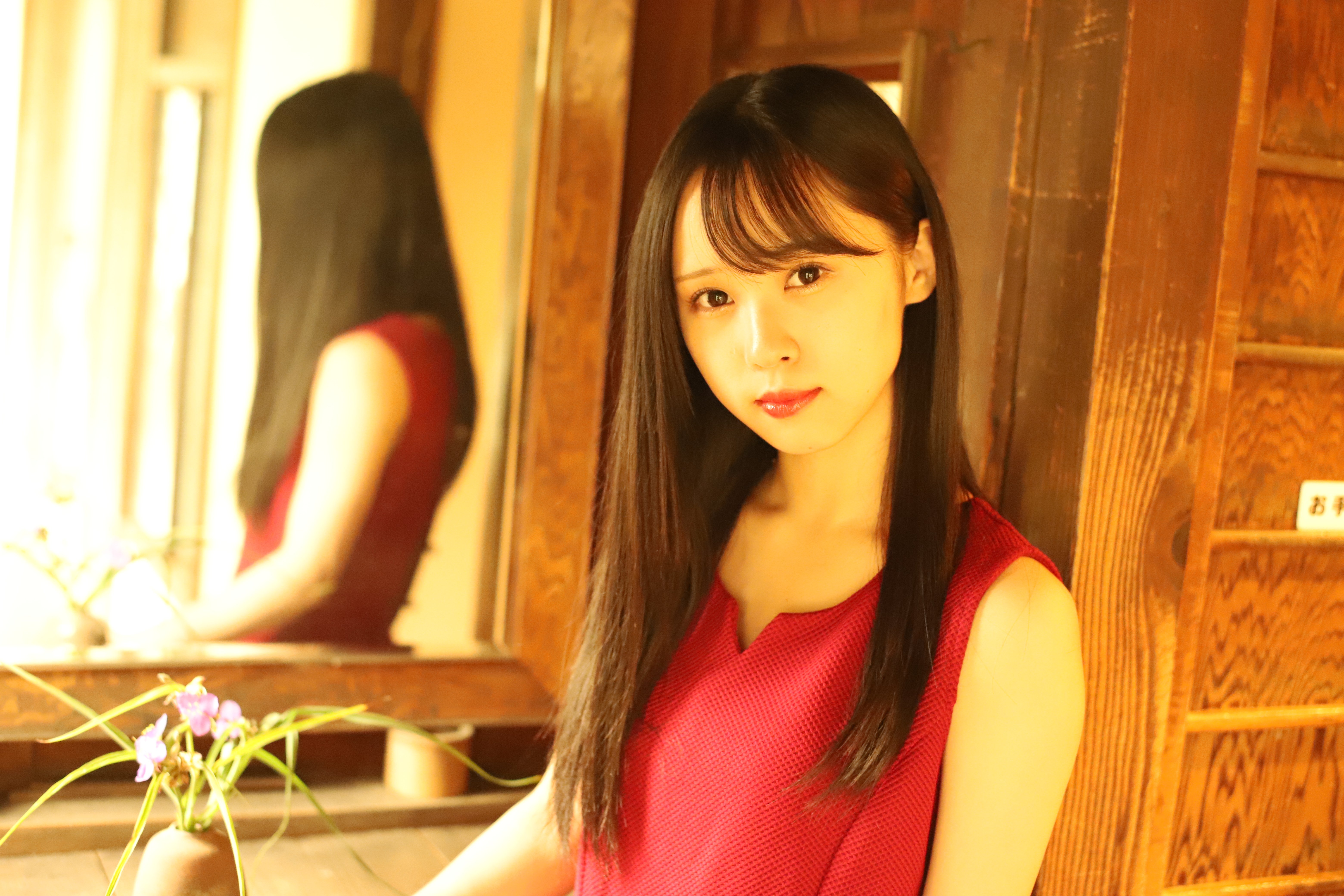 工藤聖奈(Parfait) 2019年4月放送予定『猫王国のドナちゃん/九藏喵窩』出演決定!